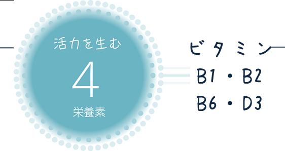 活力を生む 4栄養素 ビタミン B1・B2・B6・D3